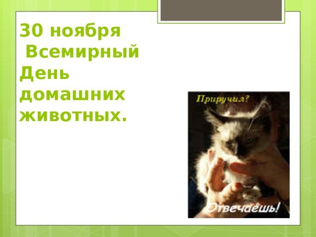 30 ноября  Всемирный День домашних животных.