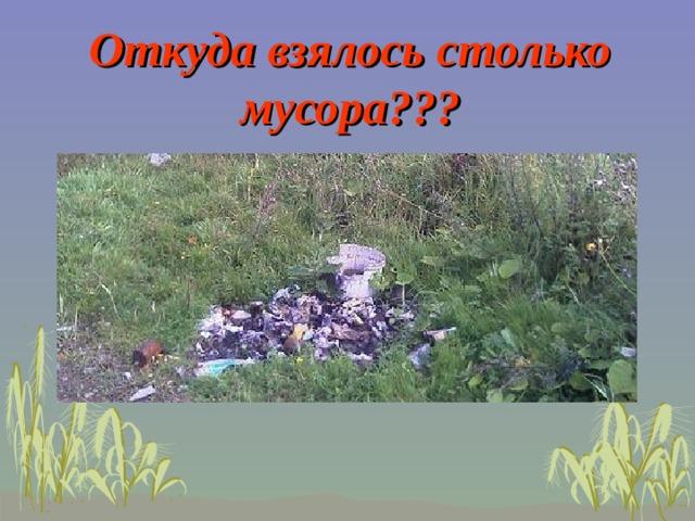 Откуда взялось столько мусора???