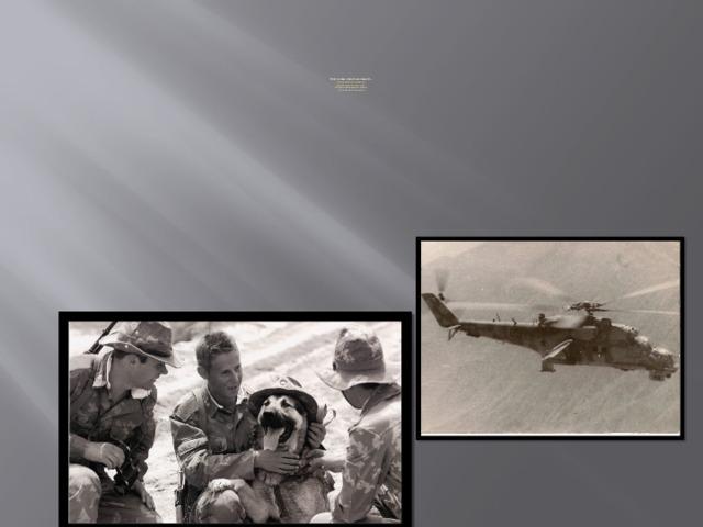 Они живы памятью нашей…  За наградами мы не гонялись  Просто делали то, что могли.  Мы с душманами яростно дрались  За свободу афганской земли