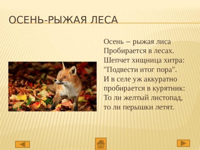 Осень-рыжая леса Осень ‒ рыжая лиса  Пробирается в лесах.  Шепчет хищница хитра: