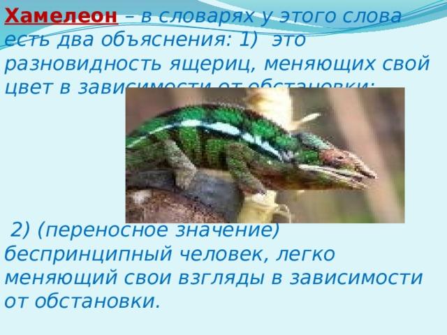 Хамелеон  – в словарях у этого слова есть два объяснения: 1) это разновидность ящериц, меняющих свой цвет в зависимости от обстановки;      2) (переносное значение) беспринципный человек, легко меняющий свои взгляды в зависимости от обстановки.