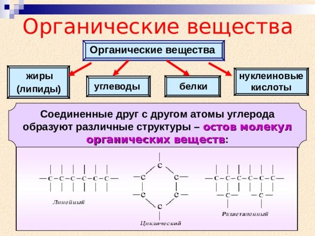 Органические вещества Органические вещества нуклеиновые кислоты жиры белки углеводы (липиды) Соединенные друг с другом атомы углерода образуют различные структуры – остов молекул органических веществ :