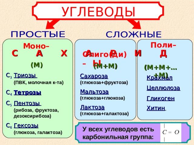 УГЛЕВОДЫ Поли–  Олиго(ди)– Моно– С А Х А Р И Д Ы (М) (М+М) (М+М+…+М) С 3  Триозы   (ПВК, молочная к-та) С 4  Тетрозы С 5  Пентозы    (рибоза, фруктоза, дезоксирибоза) С 6  Гексозы   (глюкоза, галактоза) Сахароза (глюкоза+фруктоза) Мальтоза (глюкоза+глюкоза) Лактоза (глюкоза+галактоза) Крахмал Целлюлоза Гликоген Хитин  У всех углеводов есть карбонильная группа: