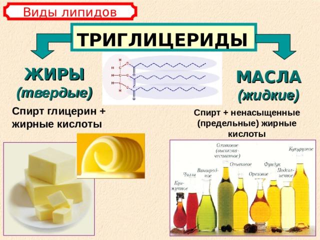 Виды липидов ТРИГЛИЦЕРИДЫ ЖИРЫ (твердые) МАСЛА  (жидкие) Спирт глицерин + жирные кислоты Спирт + ненасыщенные (предельные) жирные кислоты