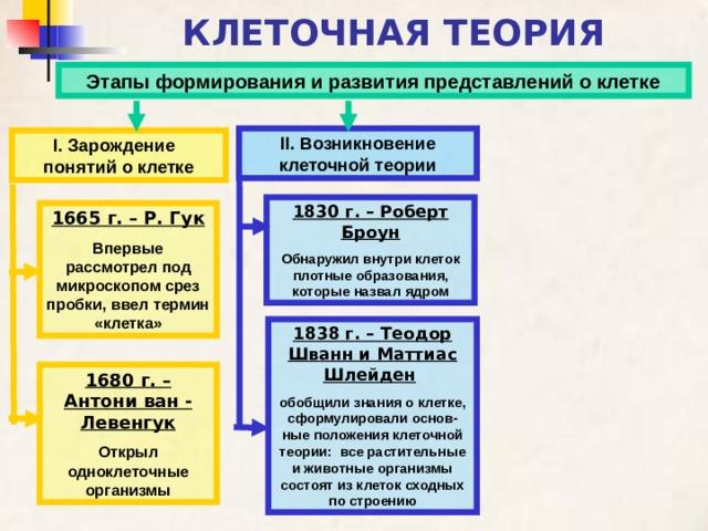 КЛЕТОЧНАЯ ТЕОРИЯ Этапы формирования и развития представлений о клетке ІІ. Возникновение клеточной теории І. Зарождение понятий о клетке 1830 г. – Роберт Броун Обнаружил внутри клеток плотные образования, которые назвал ядром 1665 г. – Р. Гук Впервые рассмотрел под микроскопом срез пробки, ввел термин «клетка» 1838 г. – Теодор Шванн и Маттиас Шлейден  обобщили знания о клетке, сформулировали основ-ные положения клеточной теории: все растительные и животные организмы состоят из клеток сходных по строению 1680 г. – Антони ван - Левенгук Открыл одноклеточные организмы