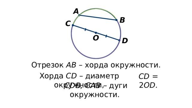 А В С О D Отрезок АВ – хорда окружности. Хорда CD – диаметр окружности, CD = 2 OD. CDB, CAB – дуги окружности.