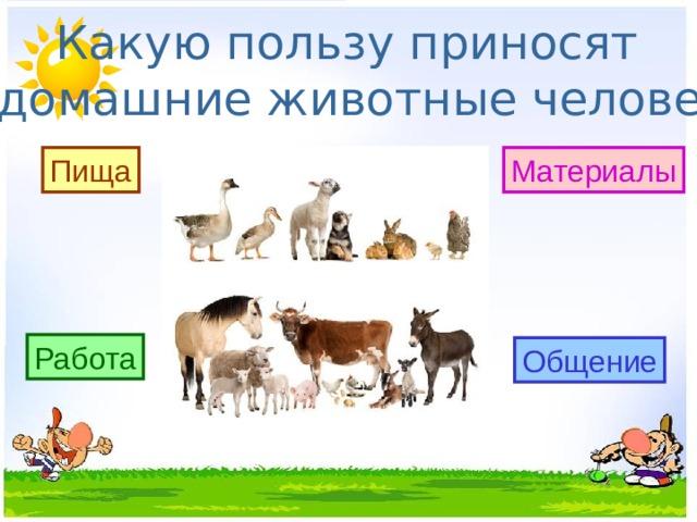 Какую пользу приносят домашние животные человеку? Пища Материалы Работа Общение