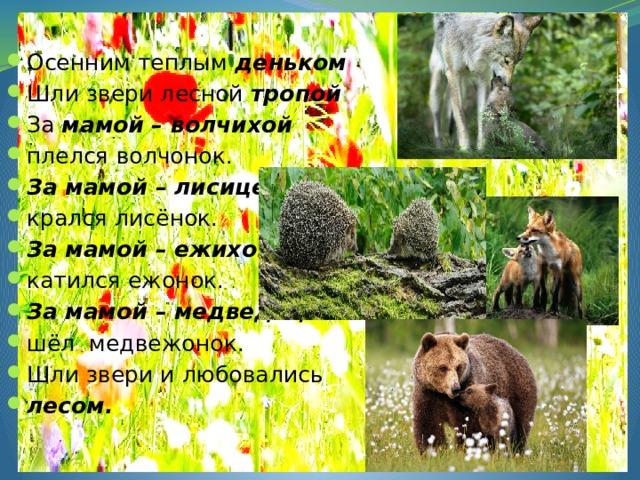Осенним теплым деньком Шли звери лесной тропой За мамой – волчихой  плелся волчонок. За мамой – лисицей крался лисёнок. За мамой – ежихой  катился ежонок. За мамой – медведицей  шёл медвежонок. Шли звери и любовались лесом.