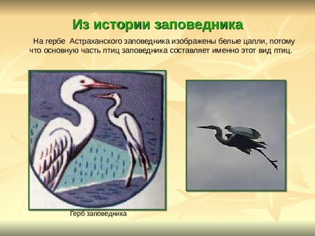 Из истории заповедника  На гербе Астраханского заповедника изображены белые цапли, потому что основную часть птиц заповедника составляет именно этот вид птиц.            Герб заповедника