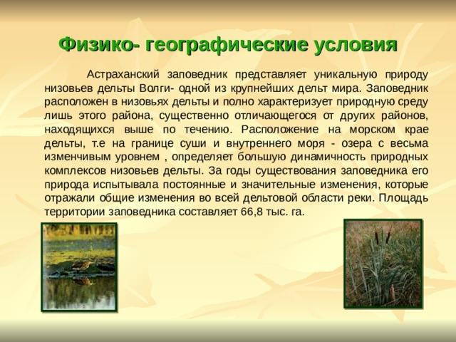 Физико- географические условия  Астраханский заповедник представляет уникальную природу низовьев дельты Волги- одной из крупнейших дельт мира. Заповедник расположен в низовьях дельты и полно характеризует природную среду лишь этого района, существенно отличающегося от других районов, находящихся выше по течению. Расположение на морском крае дельты, т.е на границе суши и внутреннего моря - озера с весьма изменчивым уровнем , определяет большую динамичность природных комплексов низовьев дельты. За годы существования заповедника его природа испытывала постоянные и значительные изменения, которые отражали общие изменения во всей дельтовой области реки. Площадь территории заповедника составляет 66,8 тыс. га.