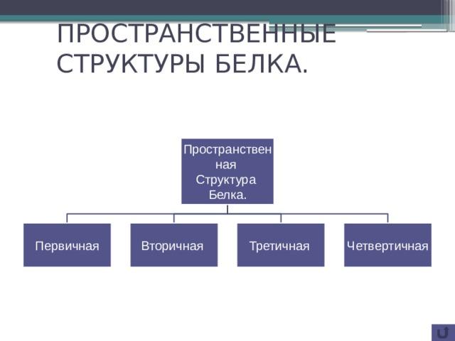 ПРОСТРАНСТВЕННЫЕ СТРУКТУРЫ БЕЛКА. Пространственная Структура Белка. Первичная Вторичная Третичная Четвертичная