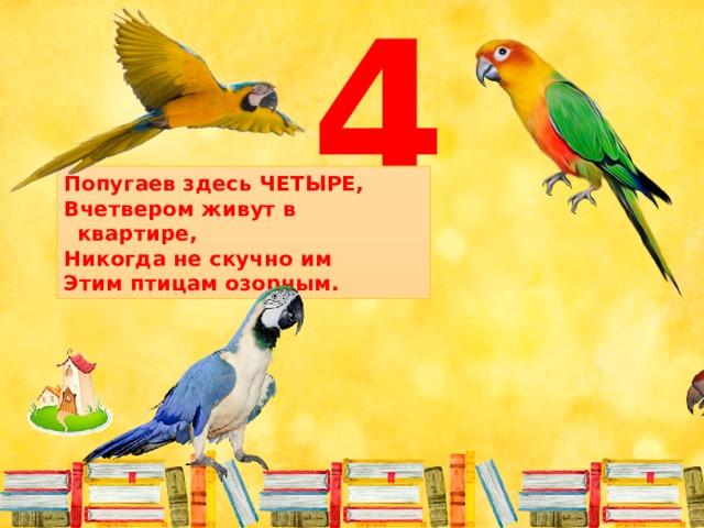 4 Попугаев здесь ЧЕТЫРЕ, Вчетвером живут в квартире, Никогда не скучно им Этим птицам озорным.