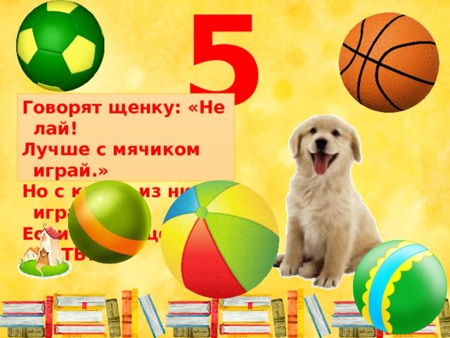 5 Говорят щенку: «Не лай! Лучше с мячиком играй.» Но с каким из них играть, Если рядом целых ПЯТЬ?