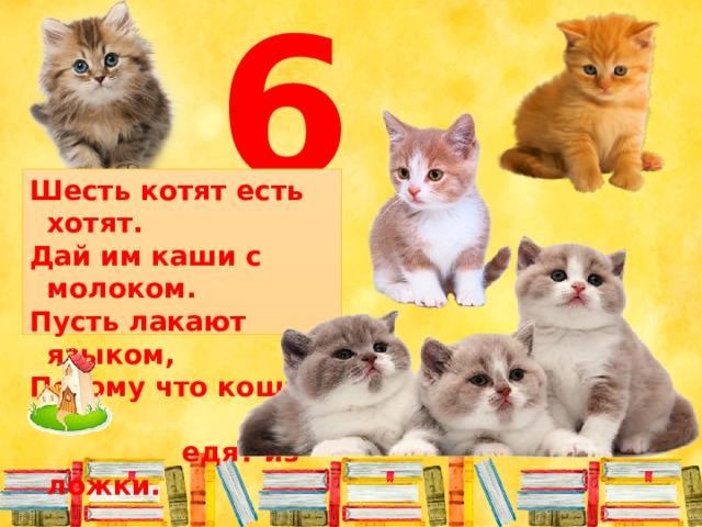 6 Шесть котят есть хотят. Дай им каши с молоком. Пусть лакают языком, Потому что кошки не  едят из ложки.