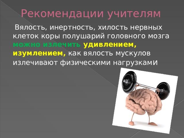 Рекомендации учителям  Вялость, инертность, хилость нервных клеток коры полушарий головного мозга можно излечить удивлением,  изумлением, как вялость мускулов излечивают физическими нагрузкам и