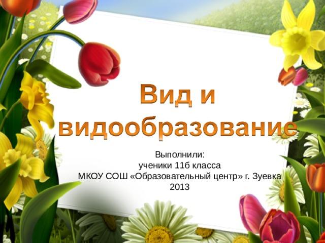Выполнили: ученики 11б класса МКОУ СОШ «Образовательный центр» г. Зуевка 2013