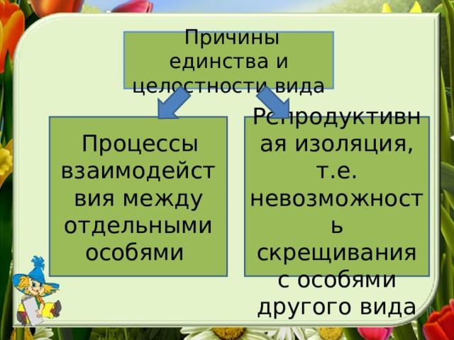 Причины единства и целостности вида  Процессы взаимодействия между отдельными особями  Репродуктивная изоляция, т.е. невозможность скрещивания с особями другого вида