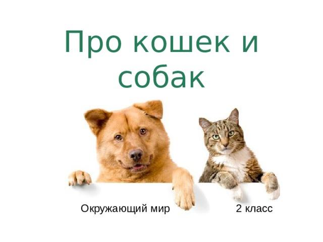 Про кошек и собак Окружающий мир 2 класс