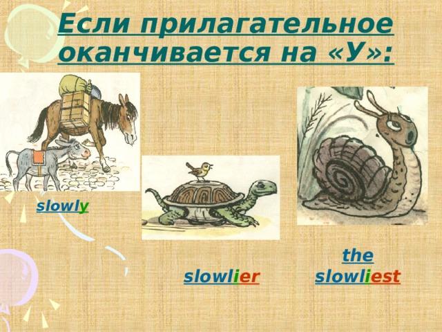 Если прилагательное оканчивается на «У»: slowl y the slowl i est slowl i er