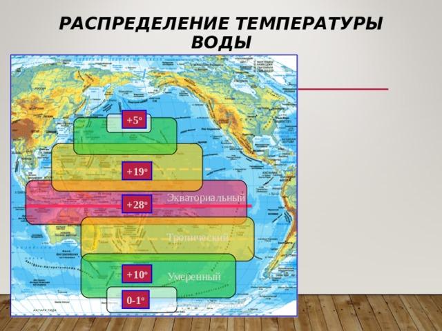 РАСПРЕДЕЛЕНИЕ ТЕМПЕРАТУРЫ ВОДЫ +5 о +19 о Экваториальный Тропический Умеренный Антарктический +28 о +10 о 0-1 о