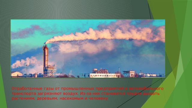 Отработанные газы от промышленных предприятий и автомобильного транспорта загрязняют воздух. Из-за них становится трудно дышать растениям, деревьям, насекомым и человеку