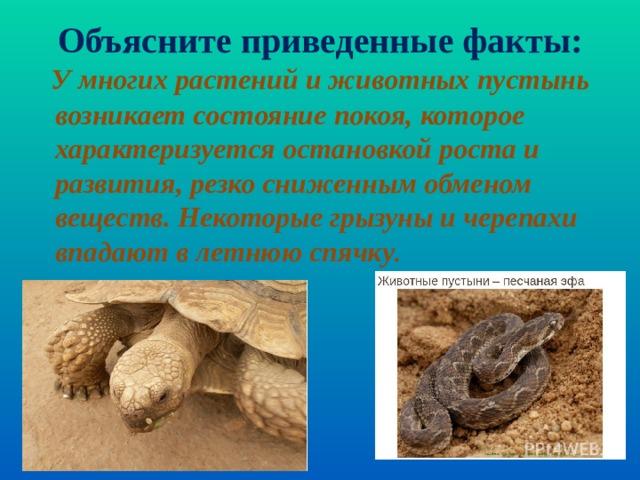 У многих растений и животных пустынь возникает состояние покоя, которое характеризуется остановкой роста и развития, резко сниженным обменом веществ. Некоторые грызуны и черепахи впадают в летнюю спячку . Объясните приведенные факты: