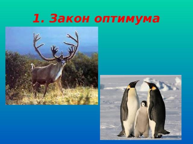 1. Закон оптимума
