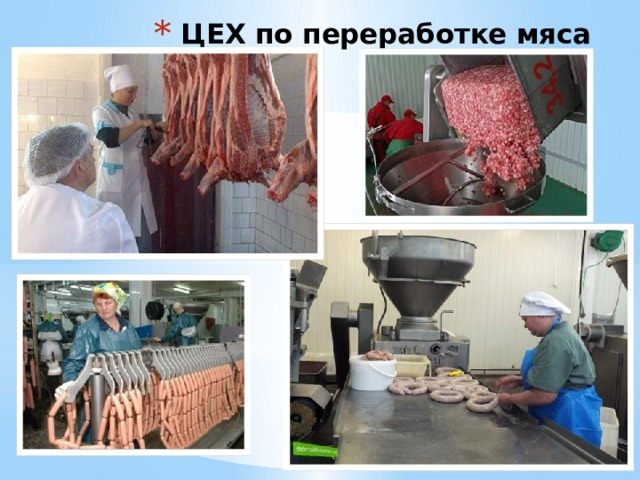 ЦЕХ по переработке мяса