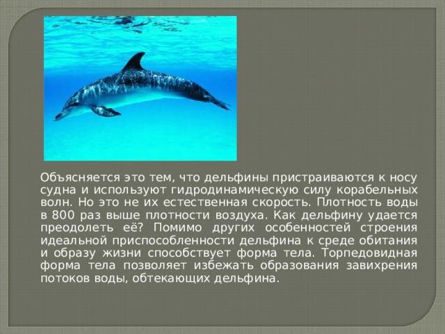 Объясняется это тем, что дельфины пристраиваются к носу судна и используют гидродинамическую силу корабельных волн. Но это не их естественная скорость. Плотность воды в 800 раз выше плотности воздуха. Как дельфину удается преодолеть её? Помимо других особенностей строения идеальной приспособленности дельфина к среде обитания и образу жизни способствует форма тела. Торпедовидная форма тела позволяет избежать образования завихрения потоков воды, обтекающих дельфина.