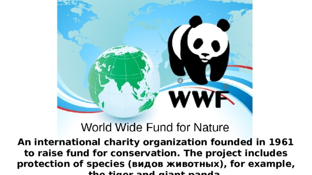 An international charity organization founded in 1961 to raise fund for conservation. The project includes protection of species (видов животных), for example, the tiger and giant panda.