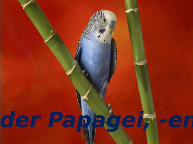 der Papagei, -en der Papagei, -en