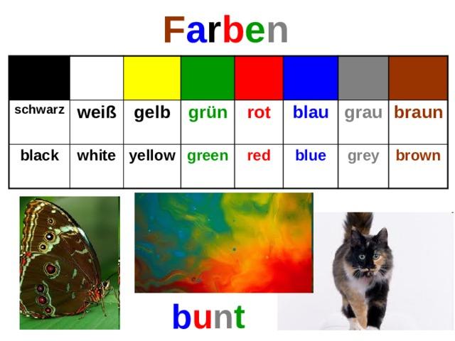 F a r b e n schwarz weiß black gelb white grün yellow rot green blau red grau blue braun grey brown b u n t