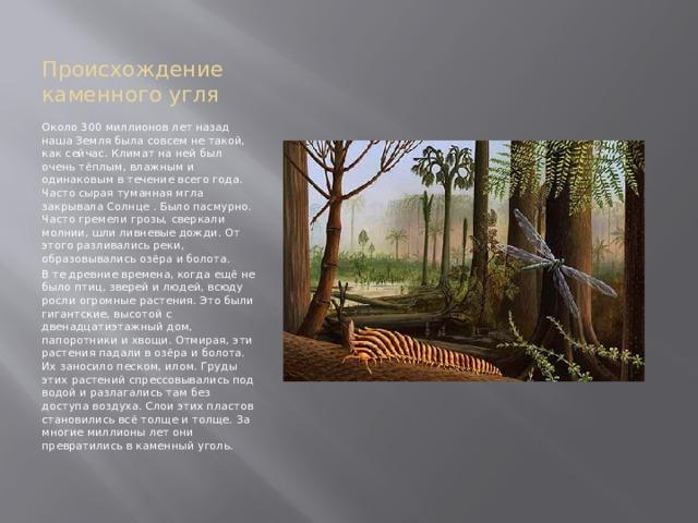 Происхождение каменного угля Около 300 миллионов лет назад наша Земля была совсем не такой, как сейчас. Климат на ней был очень тёплым, влажным и одинаковым в течение всего года. Часто сырая туманная мгла закрывала Солнце . Было пасмурно. Часто гремели грозы, сверкали молнии, шли ливневые дожди. От этого разливались реки, образовывались озёра и болота. В те древние времена, когда ещё не было птиц, зверей и людей, всюду росли огромные растения. Это были гигантские, высотой с двенадцатиэтажный дом, папоротники и хвощи. Отмирая, эти растения падали в озёра и болота. Их заносило песком, илом. Груды этих растений спрессовывались под водой и разлагались там без доступа воздуха. Слои этих пластов становились всё толще и толще. За многие миллионы лет они превратились в каменный уголь.