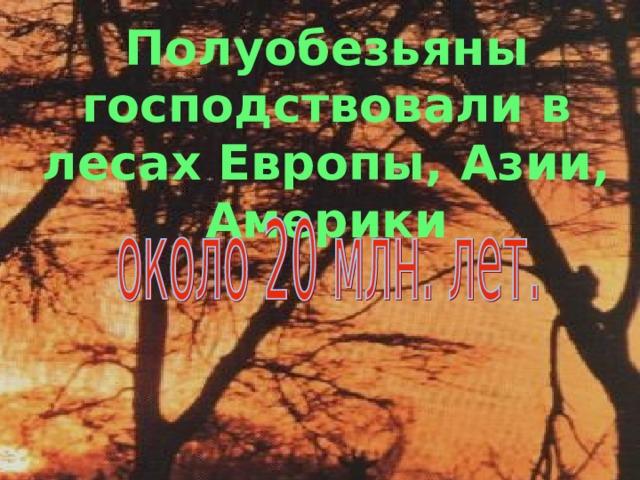 Полуобезьяны господствовали в лесах Европы, Азии, Америки Полуобезьяны, конечно, не исчезли совсем, но ареал их обитания значительно сократился.
