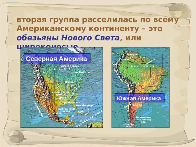 вторая группа расселилась по всему Американскому континенту – это обезьяны Нового Света , или широконосые. Северная Америка Южная Америка 40 41