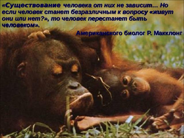 « Существование ч еловека от них не зависит… Но если человек станет безразличным к вопросу «живут они или нет?», то человек перестанет быть человеком».  Американского биолог Р. Макклонг Ответьте: Кто ввел термин приматы? Как он переводится? На каких 2 подотряда делится отряд приматов? Где обитают лемуры? На какие 2 группы делят современных обезьян? Чем они отличаются друг от друга? Выясните систематическое положение бонобо (карликового шимпанзе). Как называют орангутангов жители Суматры? Орангутанги живут по одиночке или стадами? Что означает термин груминг?     41 41