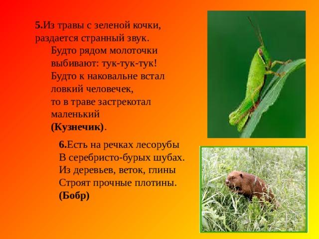 3. Хоть верь, хоть не верь;  пробегал по лесу зверь, нес на лбу он неспроста два развесистых куста. ( Олень) 3. Хоть верь, хоть не верь;  пробегал по лесу зверь, нес на лбу он неспроста два развесистых куста. ( Олень) 4 .На скале он строит дом. Разве жить на страшно в нем? Хоть кругом и красота, но такая высота! Нет хозяин не боится со скалы крутой спуститься –Два могучих крыла у хозяина (Орла)