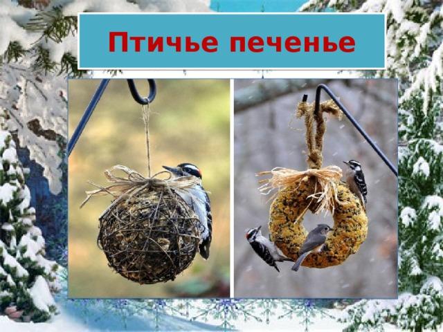 Птичье печенье