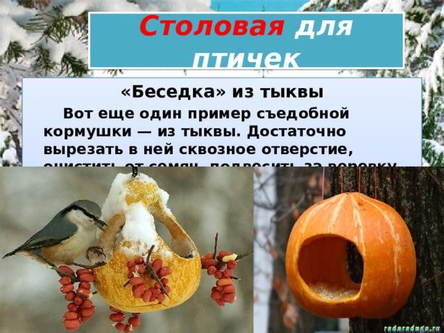Столовая для птичек «Беседка» из тыквы  Вот еще один пример съедобной кормушки — из тыквы. Достаточно вырезать в ней сквозное отверстие, очистить от семян, подвесить за веревку или проволоку.