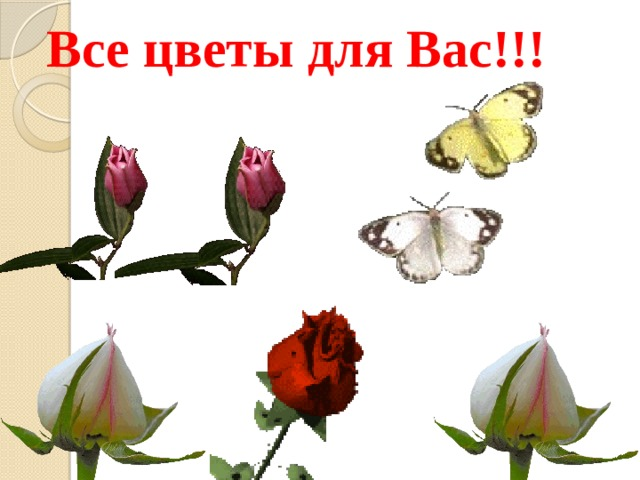 Все цветы для Вас!!!
