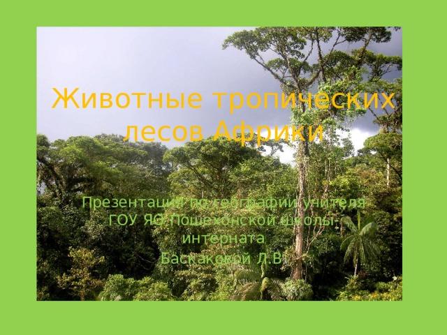 Животные  тропических  лесов  Африки Презентация  по  географии  учителя  ГОУ  ЯО  Пошехонской  школы-интерната Баскаковой  Л.В .