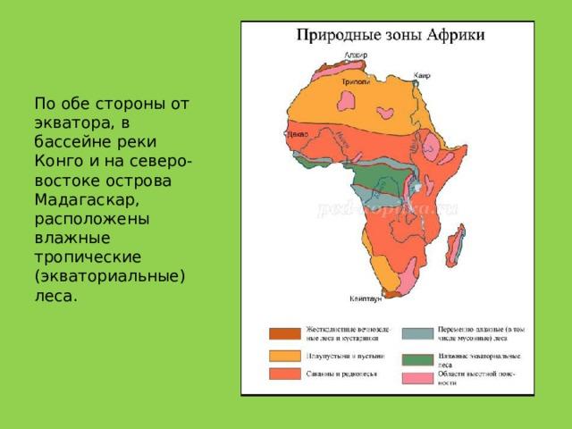 По обе стороны от экватора, в бассейне реки Конго и на северо-востоке острова Мадагаскар, расположены влажные тропические (экваториальные) леса.