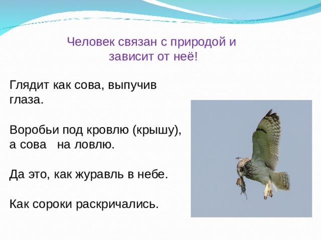 Человек связан с природой и  зависит от неё! Глядит как сова, выпучив глаза. Воробьи под кровлю (крышу), а сова на ловлю. Да это, как журавль в небе. Как сороки раскричались.