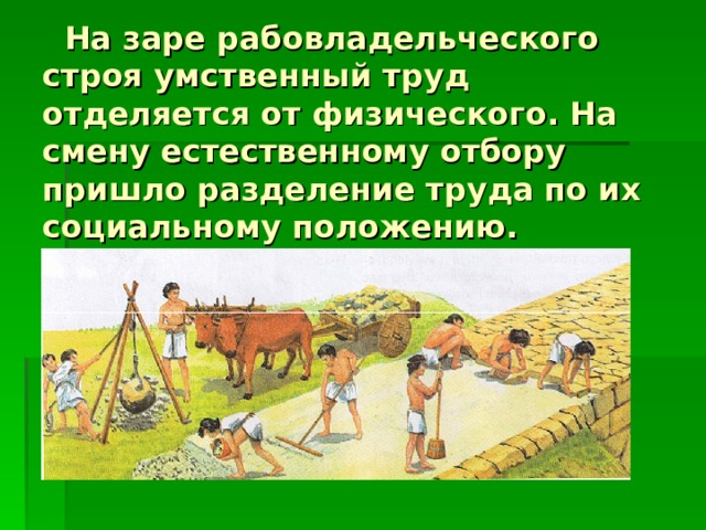 На заре рабовладельческого строя умственный труд отделяется от физического. На смену естественному отбору пришло разделение труда по их социальному положению.