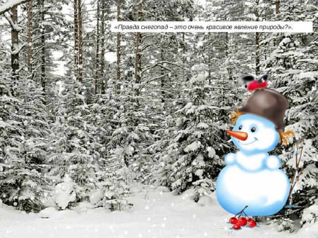 «Правда снегопад – это очень красивое явление природы?».