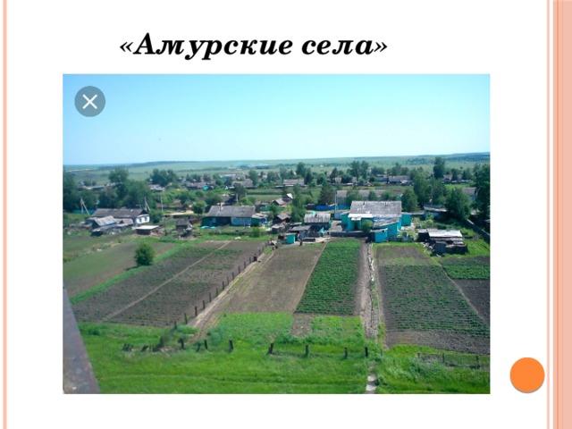 «Амурские села»