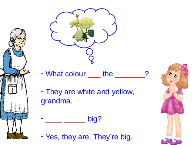 What colour ___ the _______ ?  They are white and yellow, grandma.  ____  _____ big?  Yes, they are. They're big.