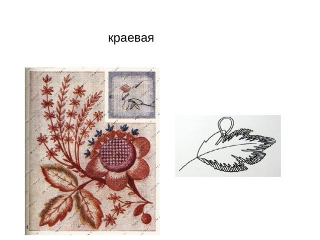 краевая