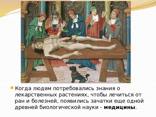 Когда людям потребовались знания о лекарственных растениях, чтобы лечиться от ран и болезней, появились зачатки еще одной древней биологической науки - медицины .