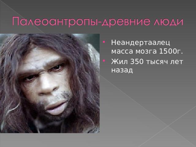 Неандертаалец масса мозга 1500г. Жил 350 тысяч лет назад